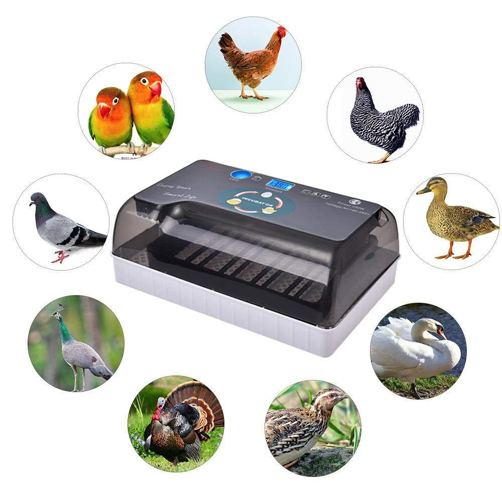 Ridgeyard 12 Eggs Digital Incubator Auto Turning Chicken Duck Quail Hatcher LED Display